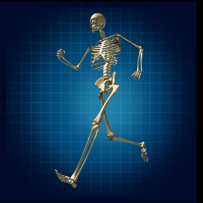 11530358 - skeleton running medical health care fitness bones symbol chart diagram